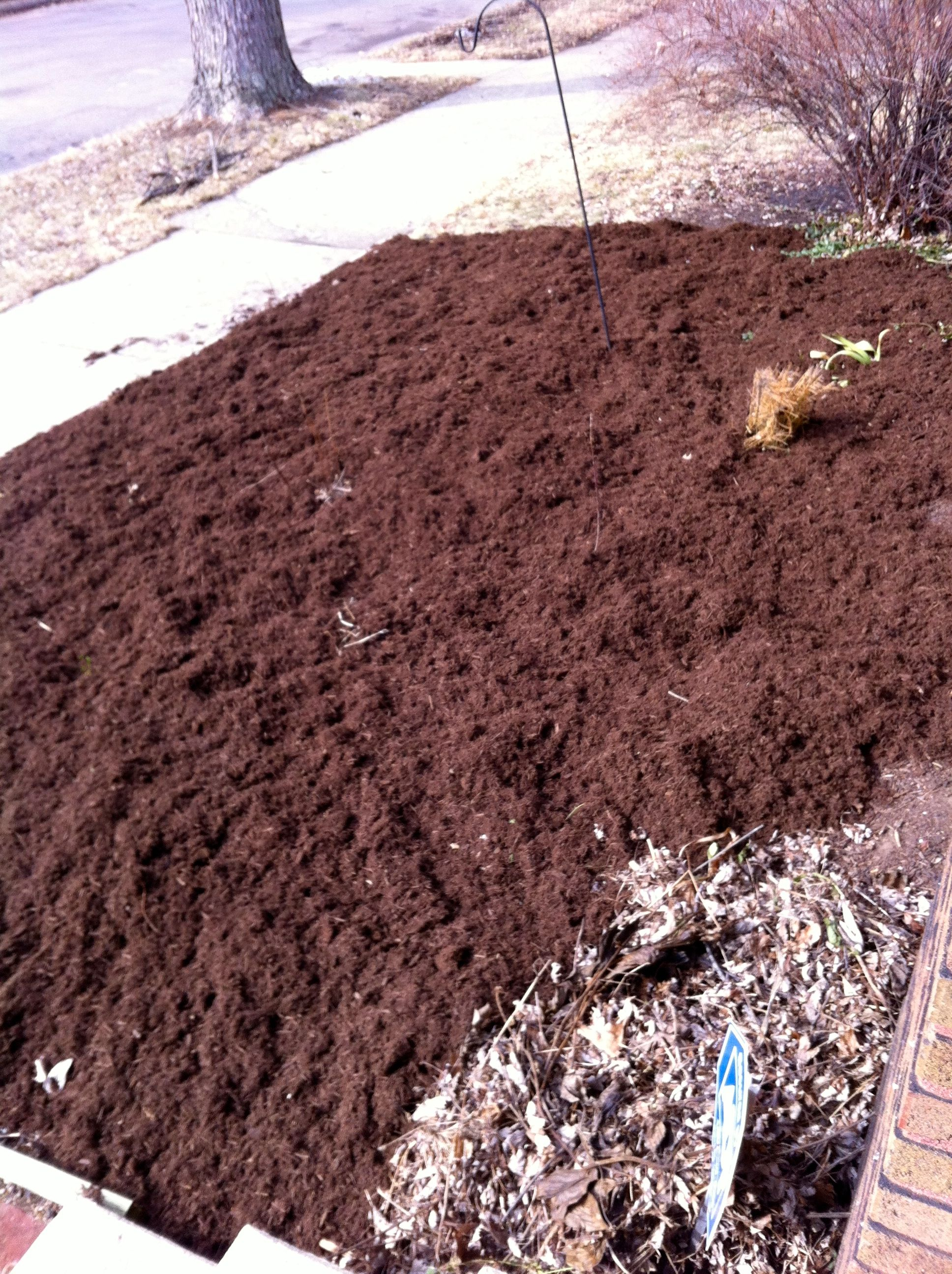 Mulching the yard in early spring